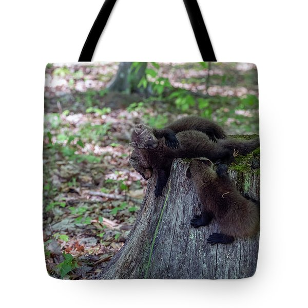 King Of The Stump Tote Bag