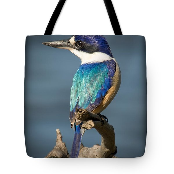 Kingfisher 3 Tote Bag