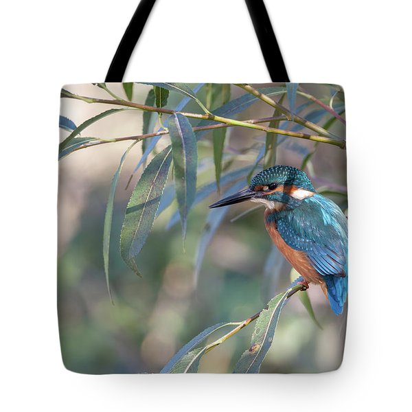 Kingfisher In Willow Tote Bag