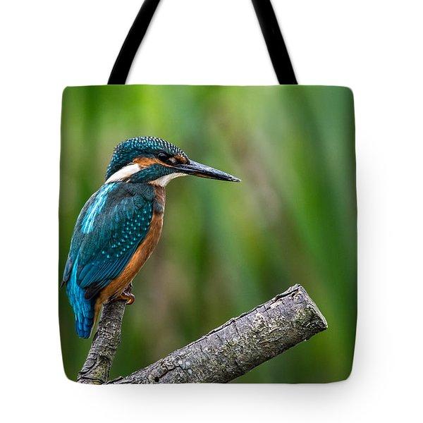 Kingfisher Pose Tote Bag