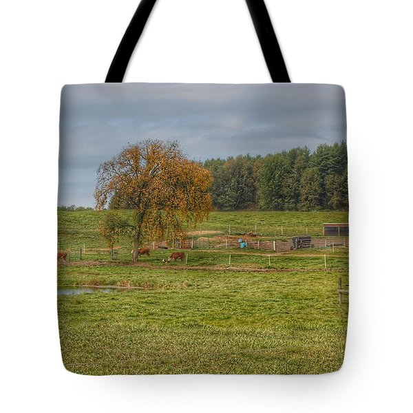 1002 - Kingston Road Cows Tote Bag