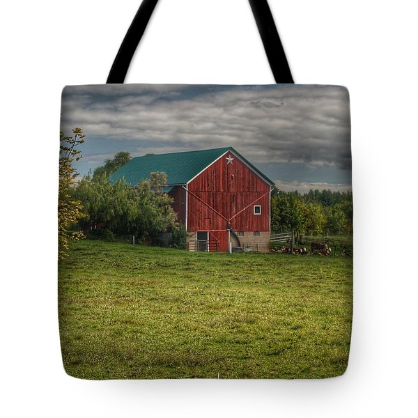0039 - Kingston's Plain Road Cow Barn I Tote Bag