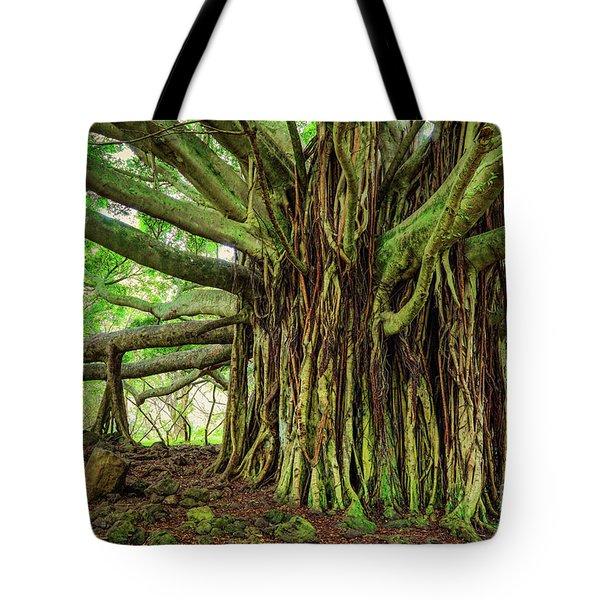 Kipahulu Banyan Tree Tote Bag by Inge Johnsson