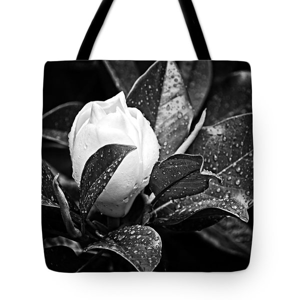 Kissed By Rain Tote Bag by Carolyn Marshall