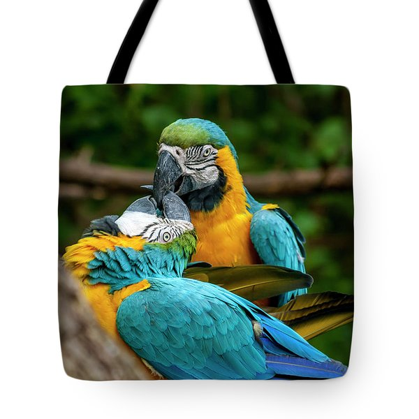 Kissing Parots Tote Bag
