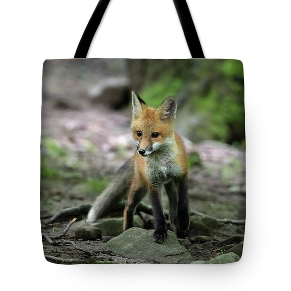 Kit Stopping And Taking A Look Tote Bag
