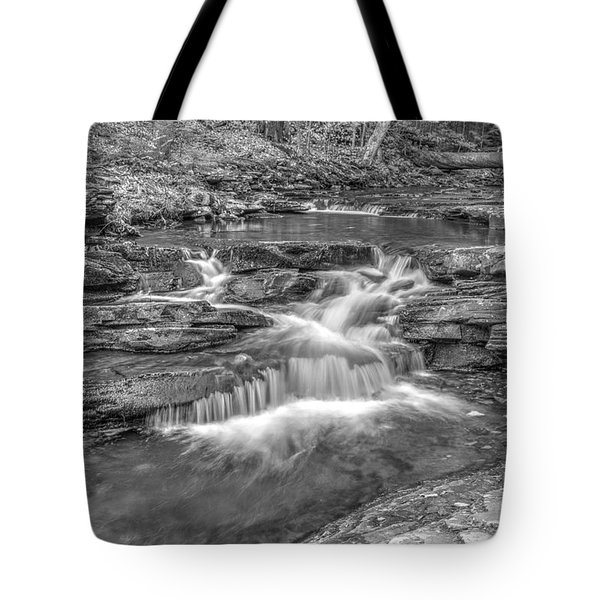 Tote Bag featuring the photograph Kitchen Creek Bw - 8902-3 by G L Sarti