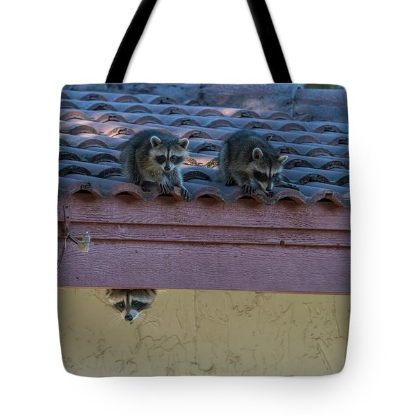 Kits On The Roof Tote Bag