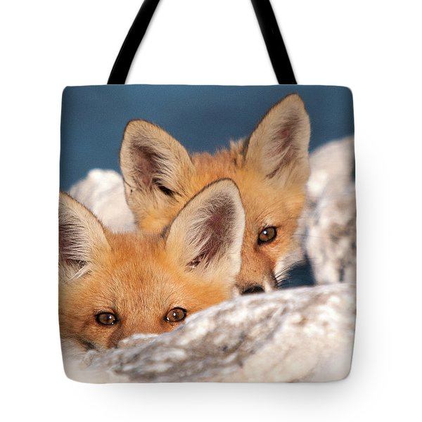 Kits Tote Bag