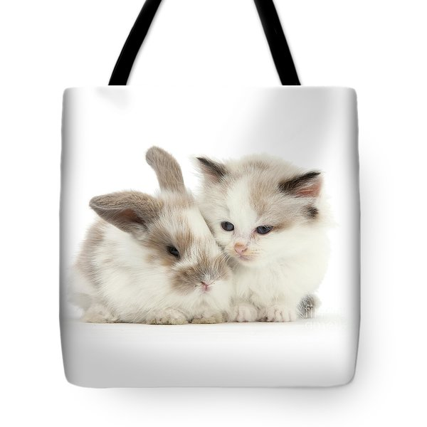 Kitten Cute Tote Bag