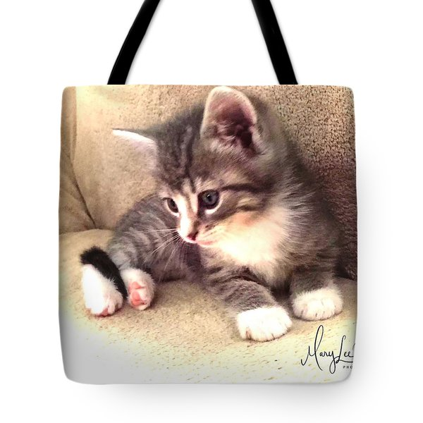 Kitten Deep In Thought Tote Bag