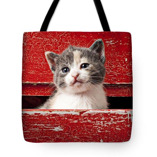 Kitten In Red Drawer Tote Bag