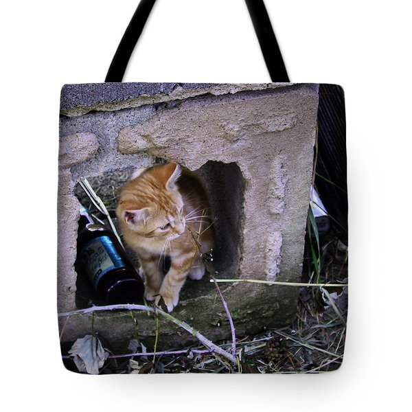 Kitten In The Junk Yard Tote Bag by Larry Capra