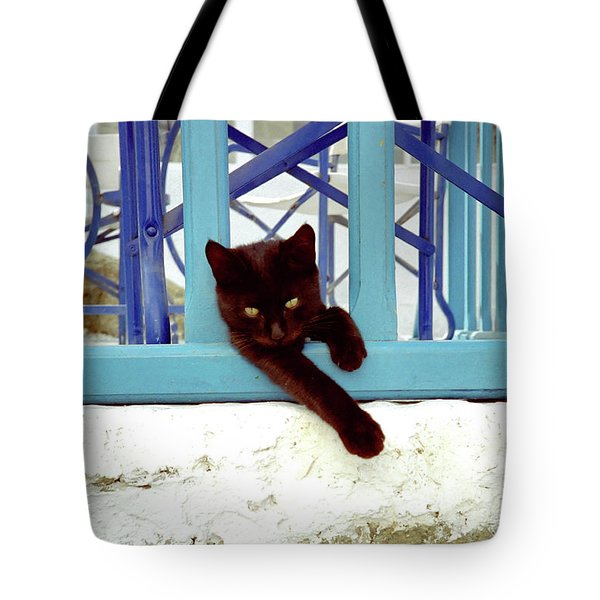 Kitten With Blue Rail Tote Bag