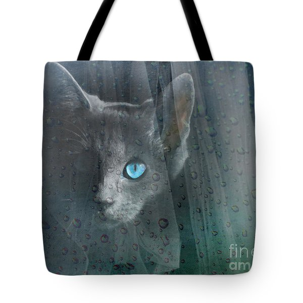 Tote Bag featuring the photograph Kitty At The Window by Chris Armytage