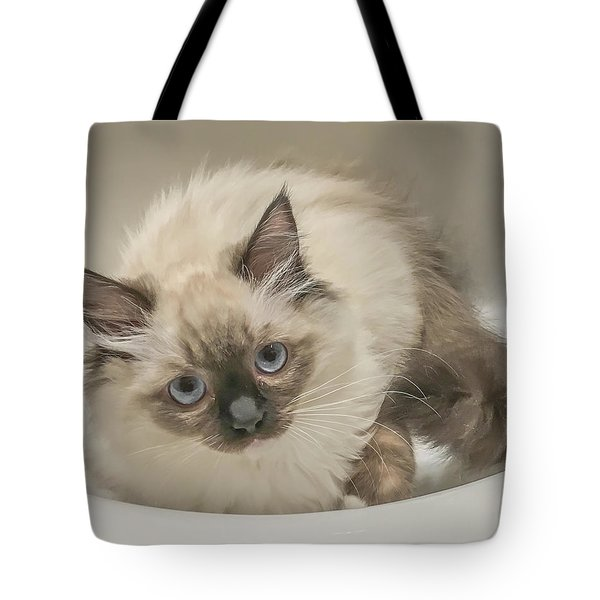 Kitty Blue Eyes Tote Bag