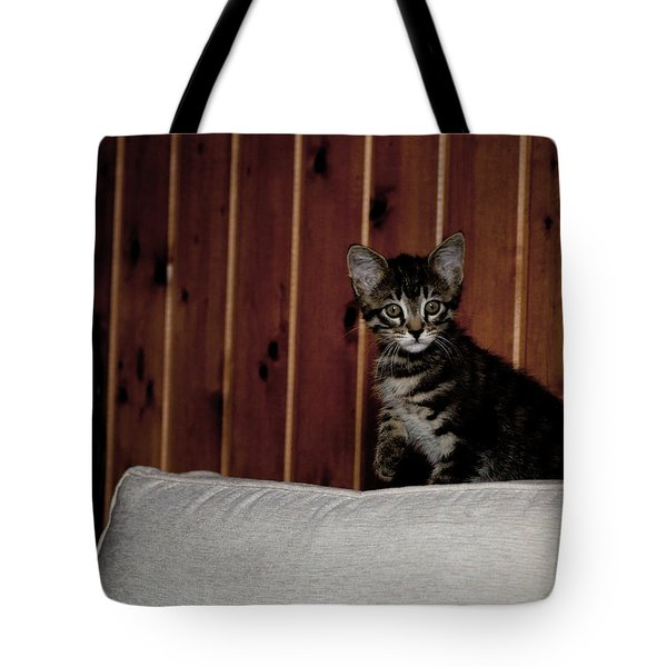 Tote Bag featuring the photograph Kitty by Laura Melis