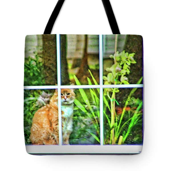 Tote Bag featuring the photograph Kitty Reflections by Wendy McKennon
