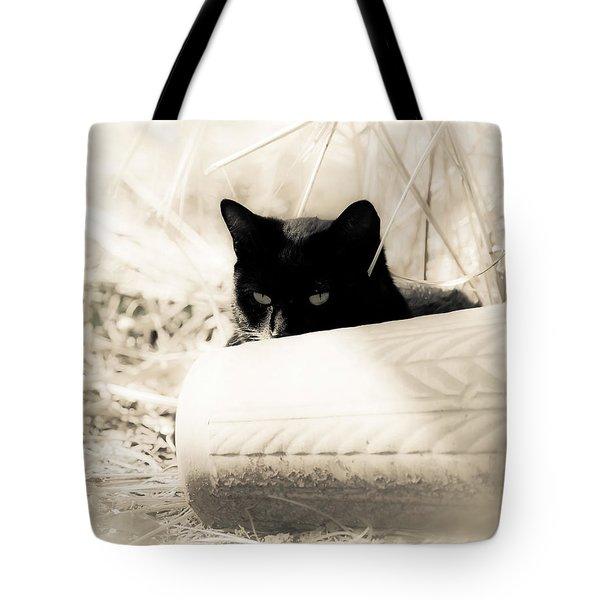 Kitty Stalks In Sepia Tote Bag