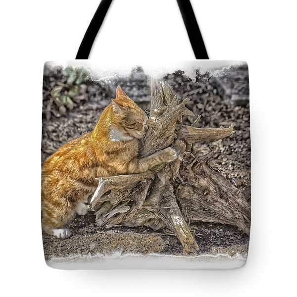 Kitty Thinking Of Mischievous Things Tote Bag