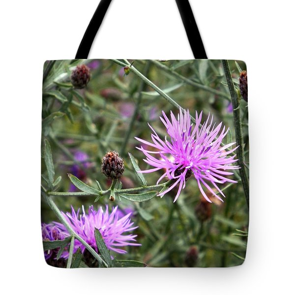 Knapweed Tote Bag by Danielle R T Haney