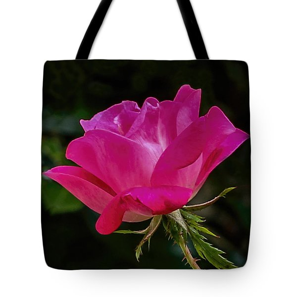 Knock-out Rose Tote Bag by Susi Stroud