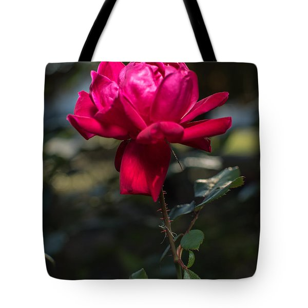 Knockout Rose Tote Bag