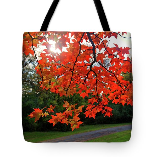 Knox Park 8444 Tote Bag by Guy Whiteley