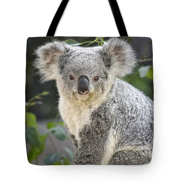 Koala Female Portrait Tote Bag by Jamie Pham