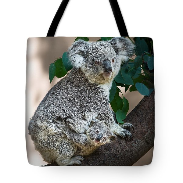 Koala Joey And Mom Tote Bag by Jamie Pham