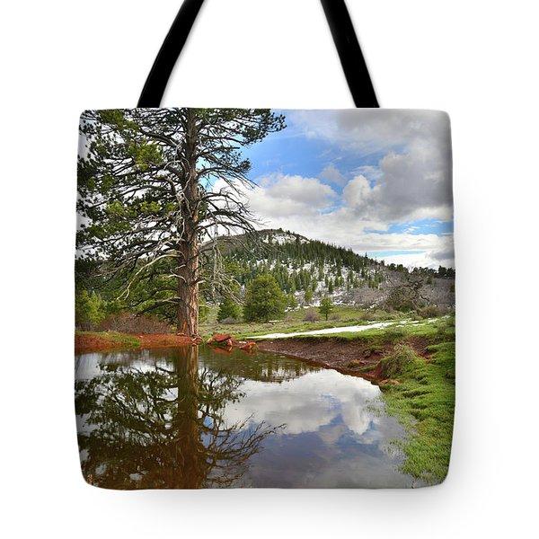 Kolob Reflection Tote Bag