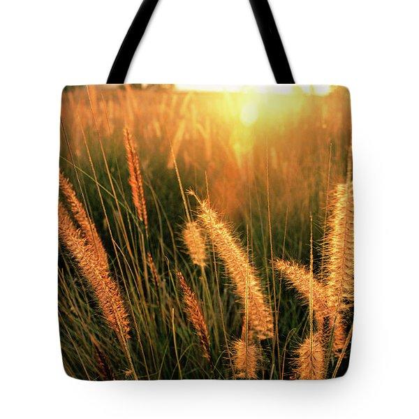 Kona Light On Fountain Grass I Tote Bag