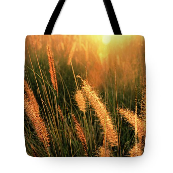 Tote Bag featuring the photograph Kona Light On Fountain Grass I by Charmian Vistaunet