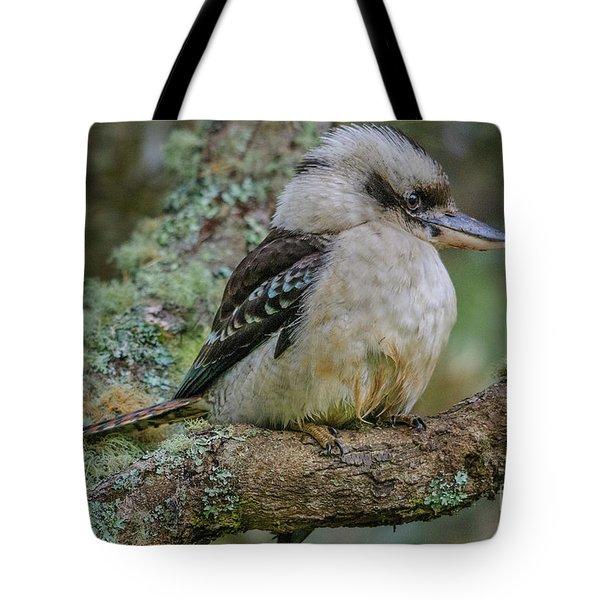 Kookaburra 4 Tote Bag