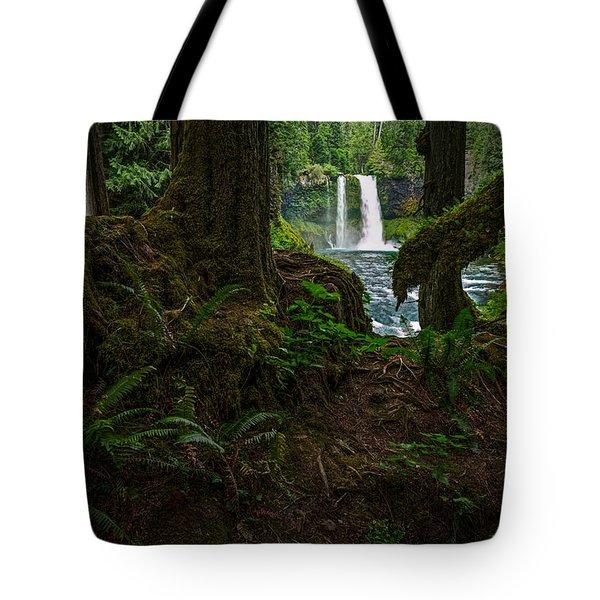 Koosah Falls Through The Trees Tote Bag