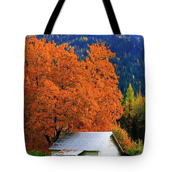 Kootenay Autumn Shed Tote Bag