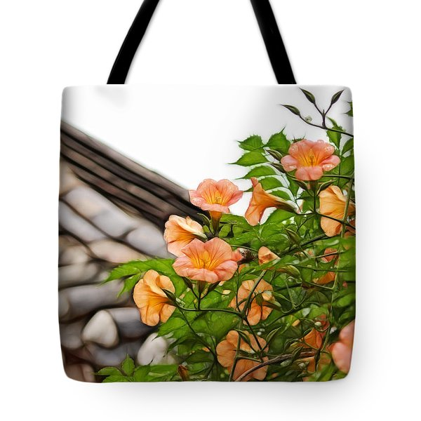 Korean Beauty Tote Bag