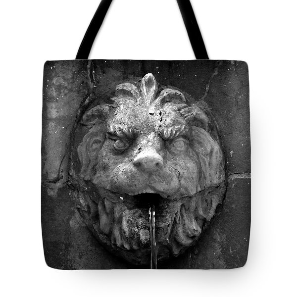 Koreshans Lion Tote Bag by David Lee Thompson