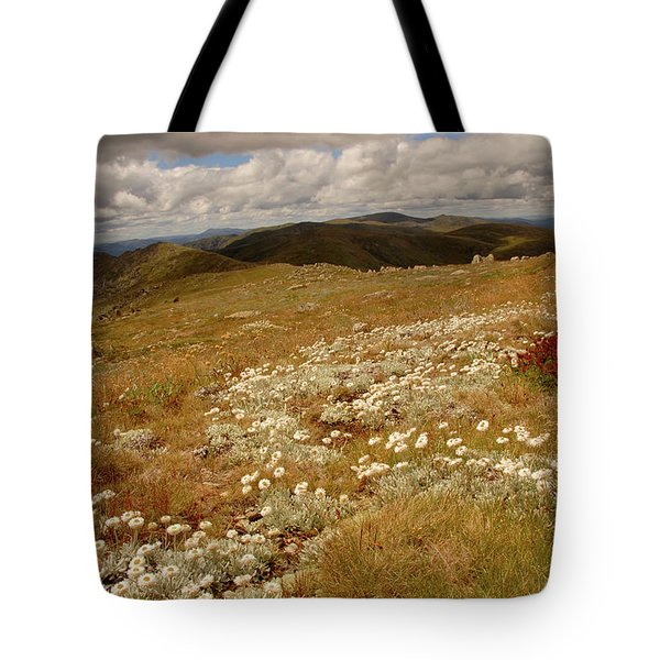 Kosciusko Summer Tote Bag