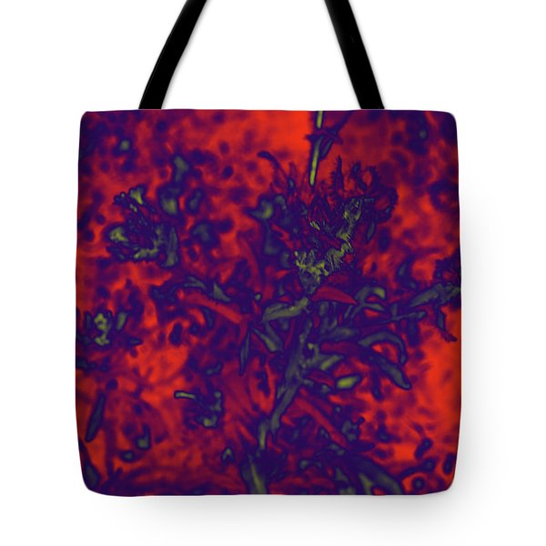 Tote Bag featuring the digital art Krazy Kosmic Katchina I by Carolina Liechtenstein