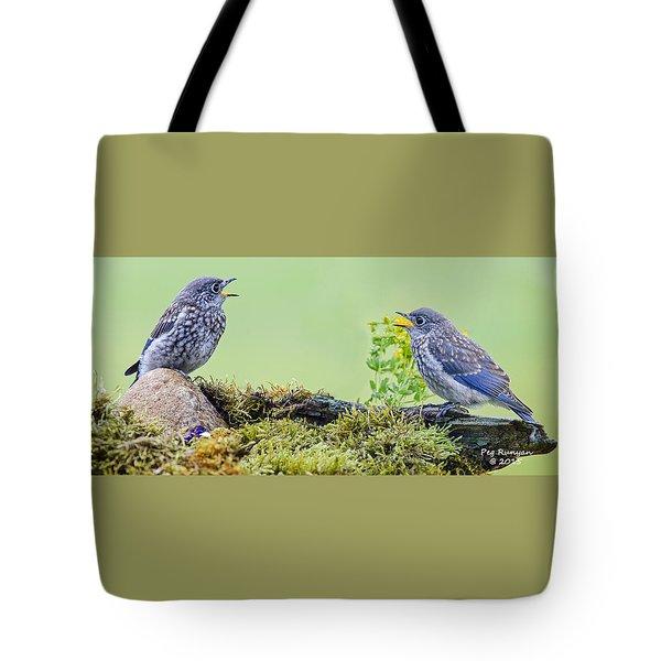 Kris And Kori Baby Bluebirds Tote Bag