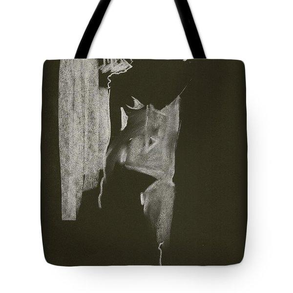 Kroki 2013 06 26 F24 Tote Bag