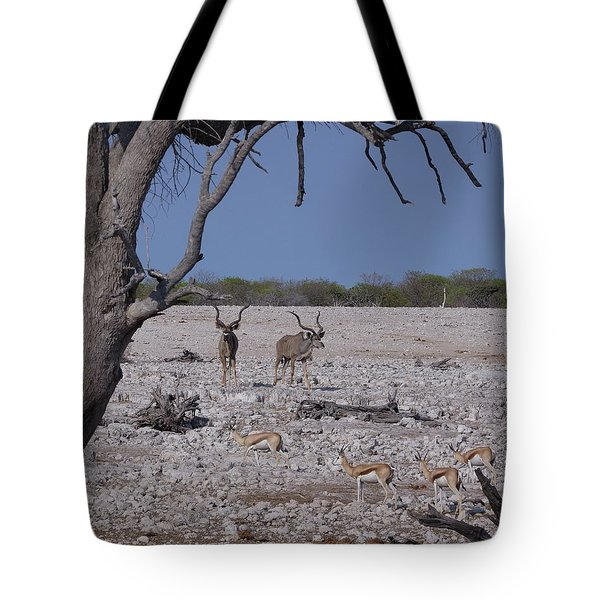Tote Bag featuring the photograph Kudu And Springbok 2 by Ernie Echols