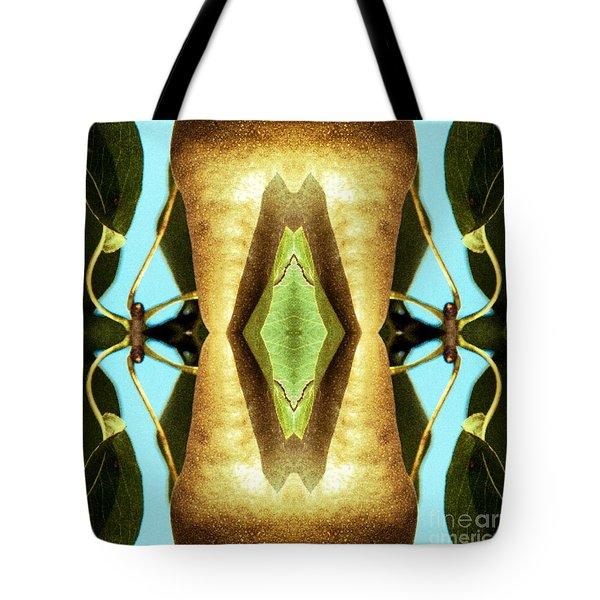 KV5 Tote Bag
