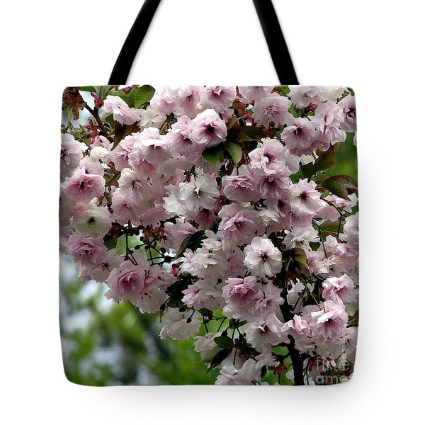 Japanese Cherry Tree Blossoms Highland Park Rochester Ny Watercolor Effect Tote Bag