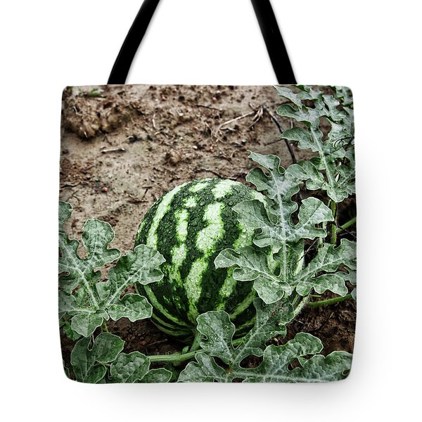 Ky Watermelon Tote Bag