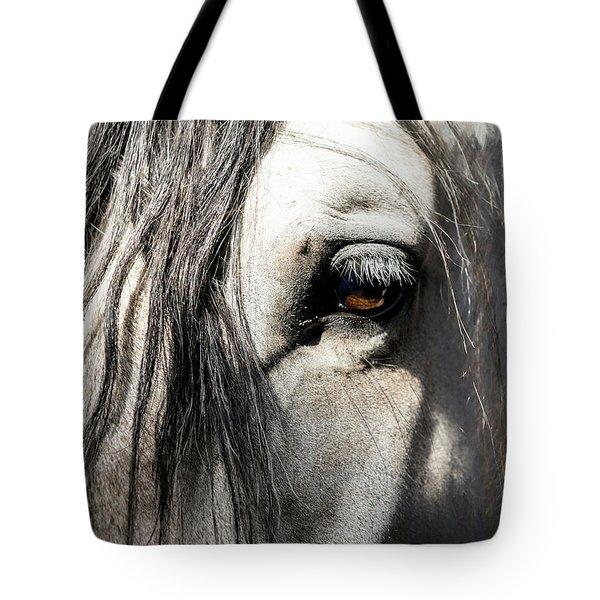 Kyra's Soul Tote Bag by Lynn Palmer