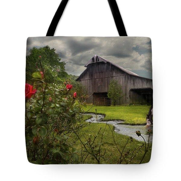 La Buena Vida Tote Bag by Don Olea