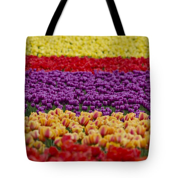La Conner Bands Of Colour 2015 Tote Bag by Maria Janicki