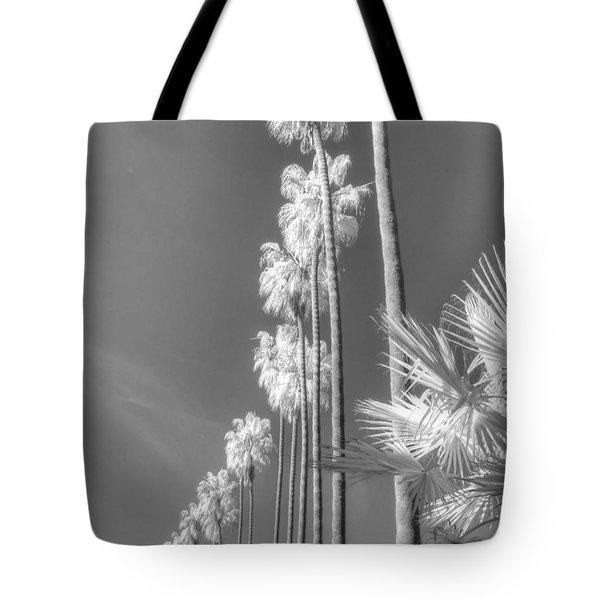 La Jolla Palm Tree Infrared Tote Bag